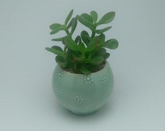 Flower dot succulent planter, plant holder, succulent holder