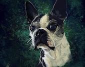 Custom Pet Portrait...