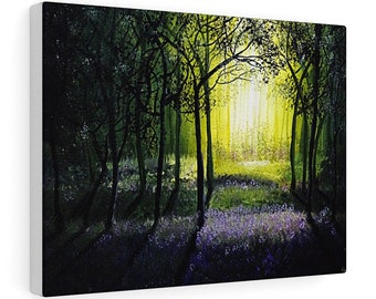 Morning Light In Forest  Stretched Canvas