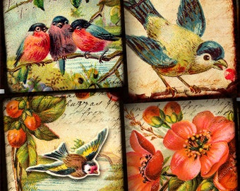 35mm Squares Flora and Fauna vintage bird and flower digital collage sheet -- printables by piddix 946