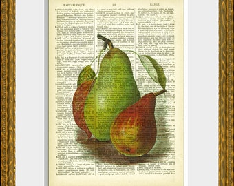 PEARS recycled book page art print - an antique dictionary page with a retooled antique fruit illustration - upcycled kitchen vintage