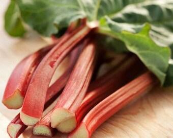 Rhubarb Victoria Vegetable Seeds (Rheum rhabarbarum) 25+Seeds