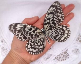 Hand Cut silk butterfly hair clip - Large Monochrome
