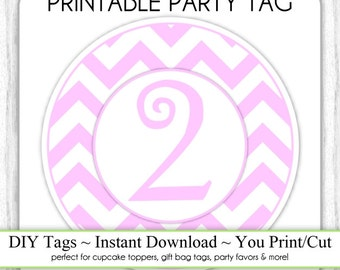 Instant Download - 2nd Birthday Printable Party Tag, Birthday Party Tag, DIY Cupcake Topper, You Print, You Cut