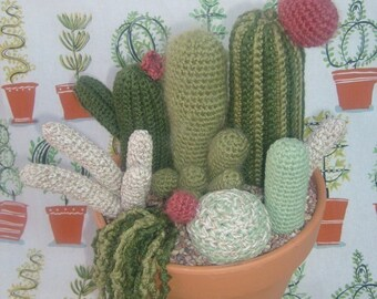 PATTERN- Large Crocheted Cactus Garden with 7 different patterns  PATTERN ONLY