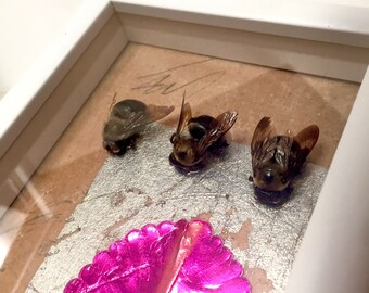 Southern Taxidermy Bee Insect Art Framed in Shadowbox — #1
