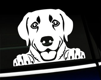 Peeking Lab - Labrador Retriever decal