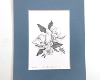"Magnolia Bouquet with Honey Bee Original Drawing 5x7"" Matted"