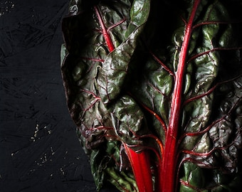 Food Photography, Still Life, Red Chard, Home Decor, Kitchen Art, Wall Art, Decor, Photography, Art