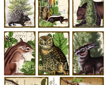 From the Forest Woodland animals creatures nature tags  printable digital download collage sheet journaling card making scrapbook