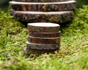 Fairy Garden accessories wood slice Stepping Stones miniatures set of 5