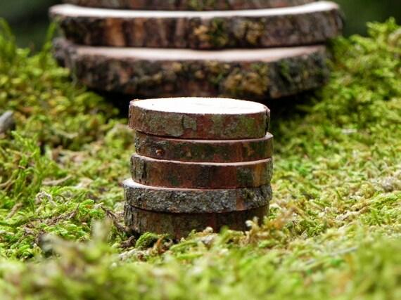 Fairy garden accessories wood slice stepping stones miniatures workwithnaturefo
