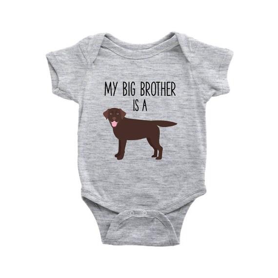 My Big Brother Sister Is A Chocolate Labrador Retriever Baby