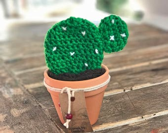 Miniature crochet flat cacti, cactus in a mini pot
