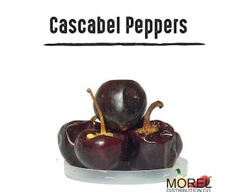 Dried Cascabel Chili Pepper (Chile Cascabel) 4 oz, 8 oz, 12 oz, and 1 lb!!