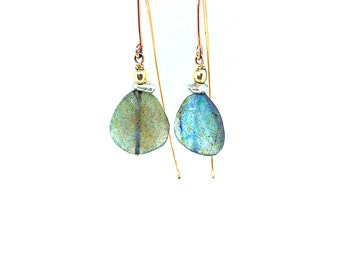 Labradorite Fish Hook Earrings