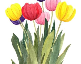 Multi Colored Tulipsl Watercolor Reproduction by Wanda Zuchowski-Schick