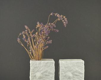 Set of 2 Matt Porcelain Vases, Fossil Relief Design Vase, Shell Textured Porcelain by Hutschenreuther, Bisque Porcelain Mid Century Vase
