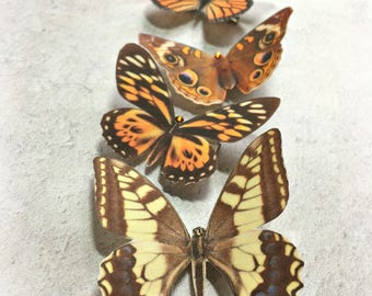 Hand cut silk butterfly hair clips with Swarovski crystal - Set 5 Autumnal browns and coppers
