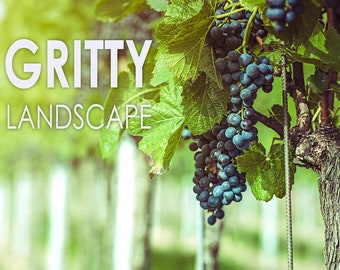 11 Gritty Landscape Adobe Lightroom presets for Lightroom 4, Lightroom 5, Lightroom 6 and Lightroom CC