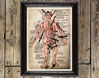 Ancient Anatomy, human anatomy, anatomy painting, vintage poster, medicine decor, man print, man home decor, medieval decoration, print, 433
