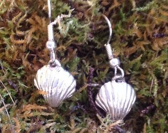 Clam shell earrings Sterling Silver
