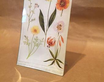 California Flora Decoupage Tray