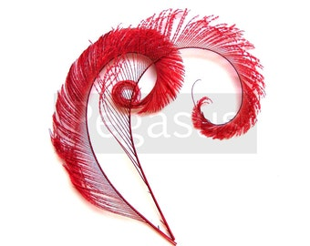 RUBY RED Curled Peacock Sword Tail Feathers (4 or 12 Feathers, 12 color option) for wedding bouquets, floral center pieces,hat,millinery
