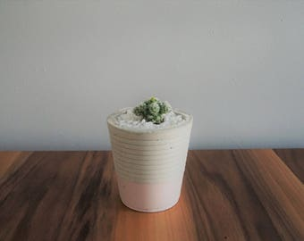 Planter, concrete soft pink, flower pot for plants, cactus or succulent Pot