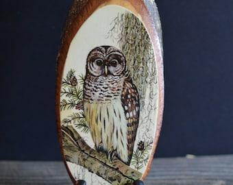 Vintage Wood Owl Plaque