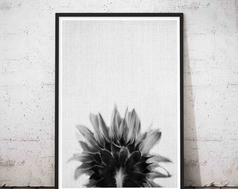 Sun Flower Art, Flower Print, Sun Flower Wall Art, Sun Flower Photography, Flower Printable, Flower Wall Decor, Flower Wall Print, Poster