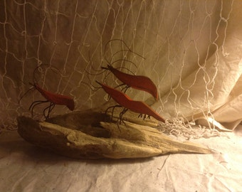 Medium Shrimp on Drift Wood Base