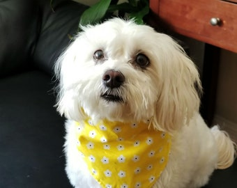 Small flower Dog bandana,  Yellow flower Dog bandana,  Pet Bandana, Small flower bandana