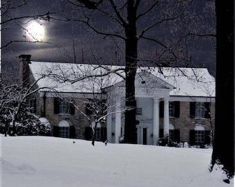 Elvis Presley ,  Graceland in the moonlight
