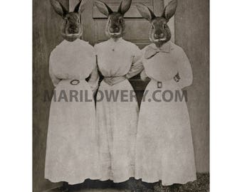 Collage Art Three Rabbits in Dress Mixed Media Collage 8.5 x 11 inch Print, Weird Easter Art