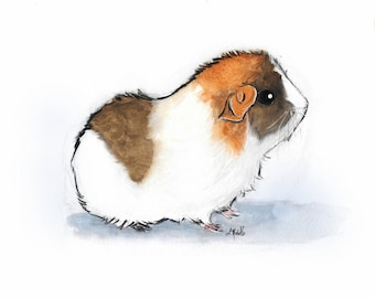 Cavy Cute Small Animals: Original Watercolor Painting Print - Brown & White Guinea Pig No. 8