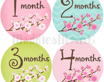 Monthly Baby Girl Stickers Baby Month Stickers, Monthly Bodysuit Sticker, Monthly Stickers (Blossom)