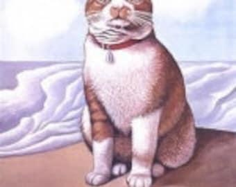 The Illustrated Cat. Original Poster. 1976