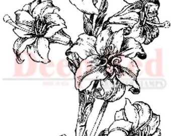 Deep Red Rubber Stamp Lillies Pen and Ink Drawing Sketch
