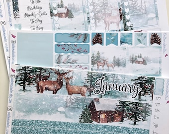 January Monthly View: EC
