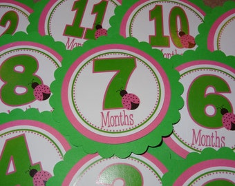 Pink and Green Ladybug First Year Photo Tags
