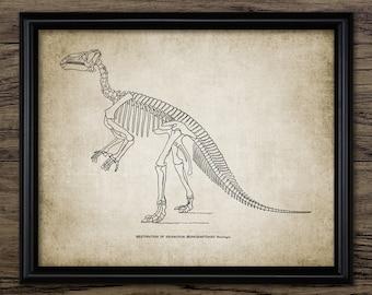 Iguanodon Skeleton Anatomy - Ornithopod Dinosaur - Paleontology - Iguanodon Extinct Animal Art - Single Print #2184 - INSTANT DOWNLOAD