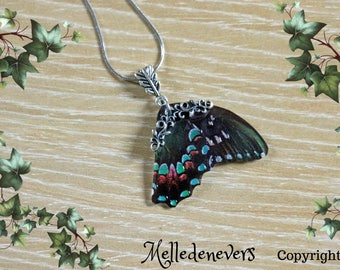 Necklace Butterfly Emerald steel surgical fairy wings