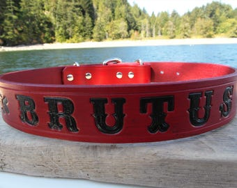 Personalised Leather Dog Collar, Engraved Dog Collar, Name Dog Collar, Leather Name Collar, Large Dog Collar