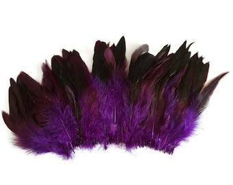Purple long feathers