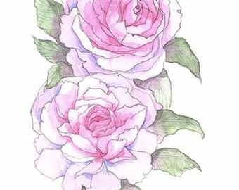 "Print ""peonies"", watercolor"