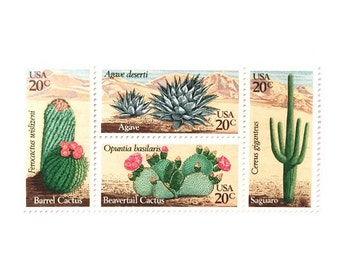 UNused 1981 Cactus Desert Plants 20 cents US Postage Stamps - for wedding invites, postcrossing, crafting, scrapbooking