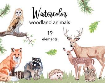 WATERCOLOR CLIPART, deer clipart, watercolour clipart set, commercial use, png files, bear clip art, woodland, png, digital, nursery, forest