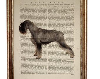 Schnauzer Gifts, Schnauzer Art, Schnauzer Dog, Dictionary Art Print, Standard Schnauzer Art, Dog Artwork, Dog Lover Gift, Book Pages, Prints