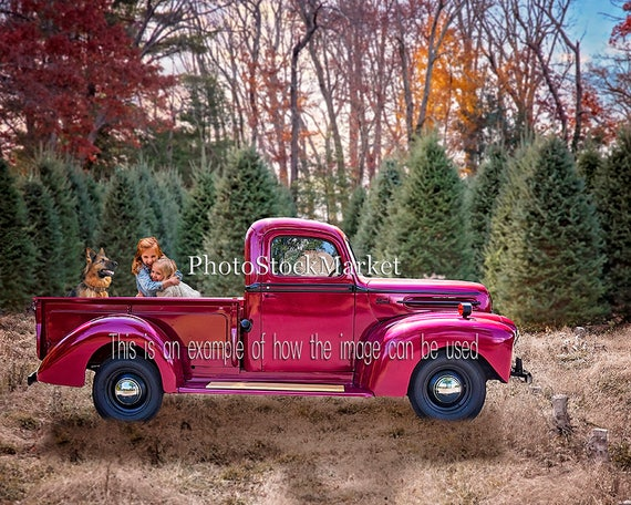 Christmas Tree Farm Vintage Ford Truck Red Holiday Backdrop Photography Digital Photoshop Background Pickup